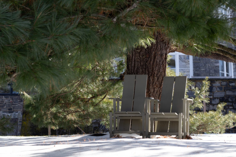 WH Chairs under pine
