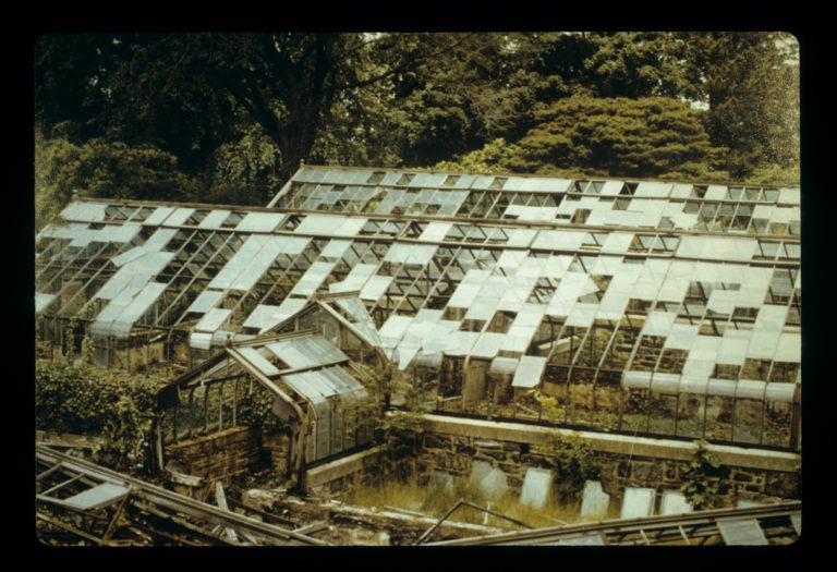 History old greenhouses credit Marco Polo Stufano 206